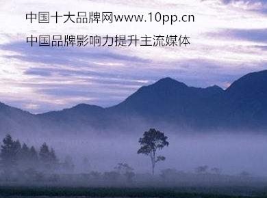 中国十大品牌网